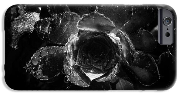 Dali Inspired iPhone Cases - Morning Dew  iPhone Case by Janh Hanh
