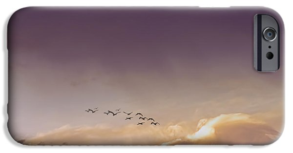 Birds iPhone Cases - Morning Flight iPhone Case by Diane Schuster