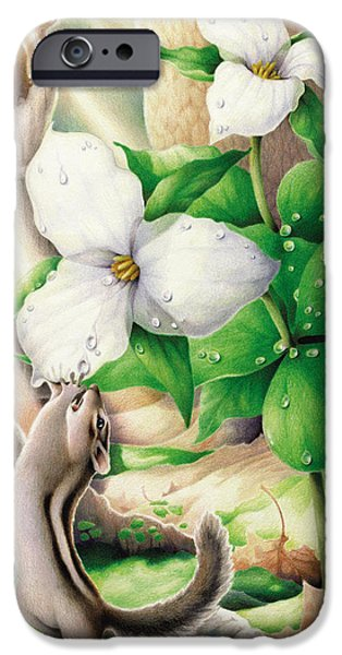 Morning Has Broken iPhone Case by Amy S Turner