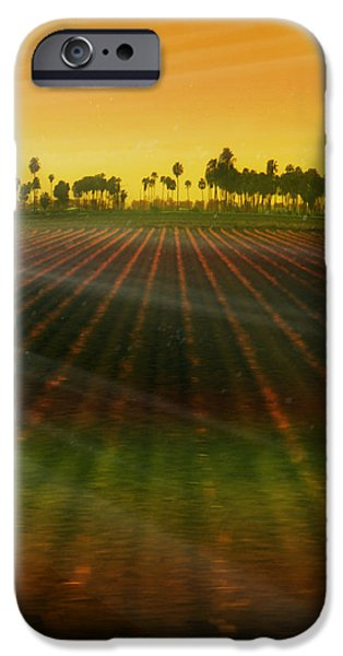 Morning has broken iPhone Case by Holly Kempe