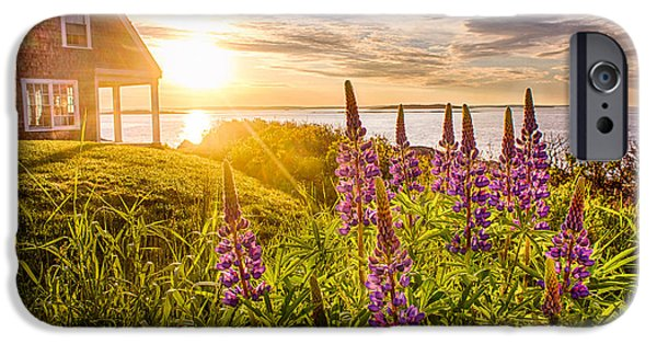 Bailey Island iPhone Cases - Morning in Maine iPhone Case by Benjamin Williamson