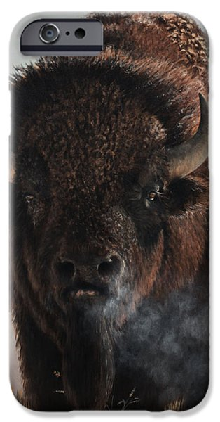 Bison iPhone Cases - Morning in the Foothills  iPhone Case by Rob Dreyer AFC