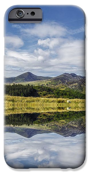 River View iPhone Cases - Morning Lakeside iPhone Case by Ian Mitchell