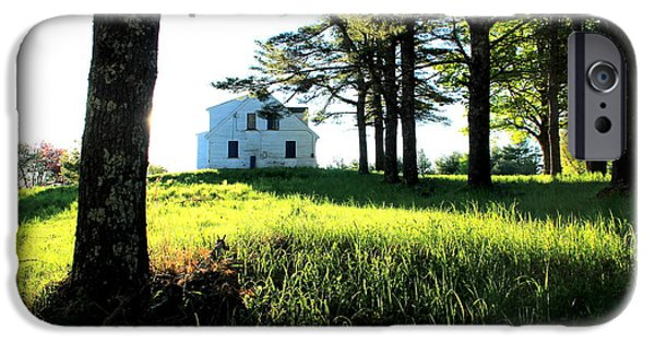 Meadow Photographs iPhone Cases - Morning  iPhone Case by Laurie Breton
