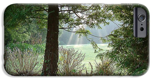 Wonderous iPhone Cases - morning light rays in Golden Gate Park iPhone Case by Michael Roll