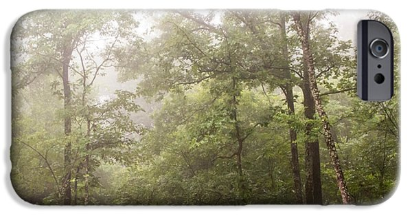 Mist iPhone Cases - Morning Mist iPhone Case by Serena Vachon