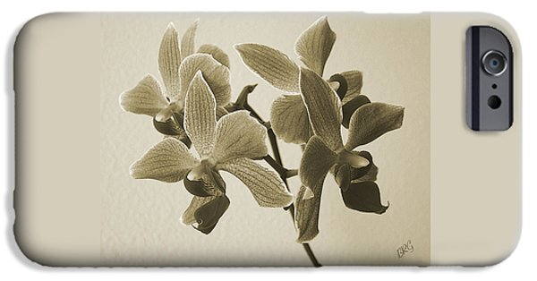 Ben And Raisa iPhone Cases - Morning Orchid iPhone Case by Ben and Raisa Gertsberg