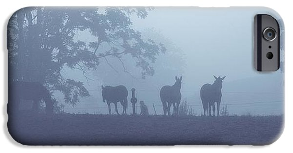 Horse iPhone Cases - Morning Silhouettes iPhone Case by Stephanie Calhoun