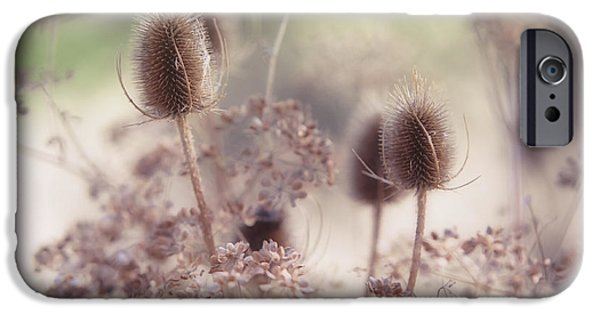 Poetic iPhone Cases - Morning Softness. Wild Grass iPhone Case by Jenny Rainbow