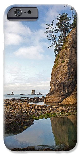 Oregon Coast iPhone Cases - Morning Tidepool iPhone Case by Mike Reid