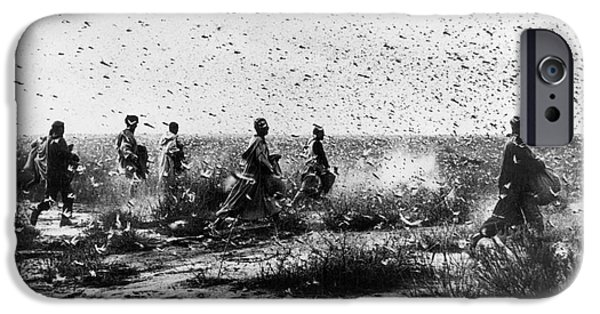 Rabat Photographs iPhone Cases - Morocco: Locusts, 1954 iPhone Case by Granger