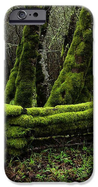 Mossy fence 3 iPhone Case by Bob Christopher