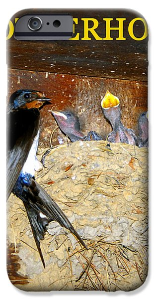 Barn Swallow iPhone Cases - Motherhood inspirational iPhone Case by David Lee Thompson