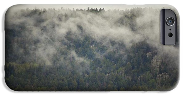 Tree Art Print iPhone Cases - Mountain Fog Forest iPhone Case by Andrea Hazel Ihlefeld