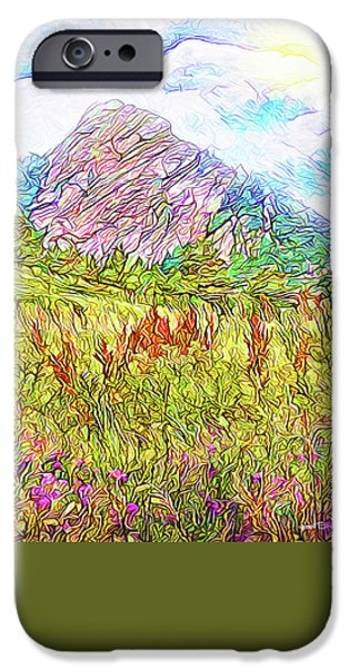 Field. Cloud iPhone Cases - Mountain Meadow Wildflowers - Boulder Colorado Park iPhone Case by Joel Bruce Wallach