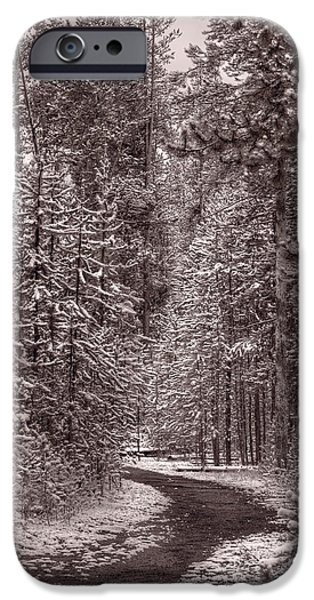 Snow iPhone Cases - Mountain Trail Yellowstone BW iPhone Case by Steve Gadomski