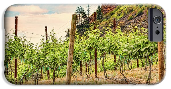 Agricultural iPhone Cases - Mountain Vineyard iPhone Case by Jean OKeeffe Macro Abundance Art