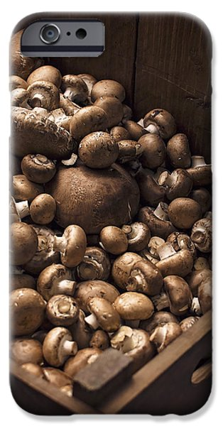 Brown Swiss iPhone Cases - Mountains of Mushrooms iPhone Case by Heather Applegate