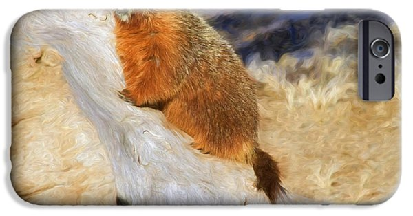 Groundhog iPhone Cases - Mountains To Climb iPhone Case by Donna Kennedy