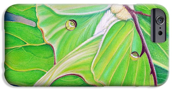 Moth iPhone Cases - Must Be Dreaming iPhone Case by Amy Tyler
