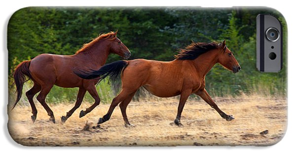 Wild Horse iPhone Cases - Mustang Gallop iPhone Case by Mike  Dawson