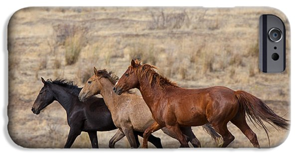 Wild Horses iPhone Cases - Mustang Trio iPhone Case by Mike  Dawson
