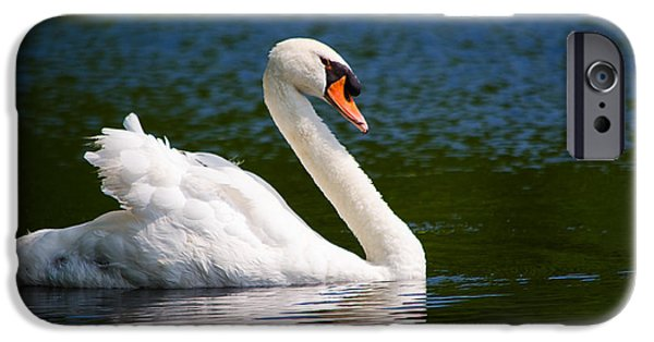 Animals Photographs iPhone Cases - My Beloved Papa Swan iPhone Case by Linda  Howes
