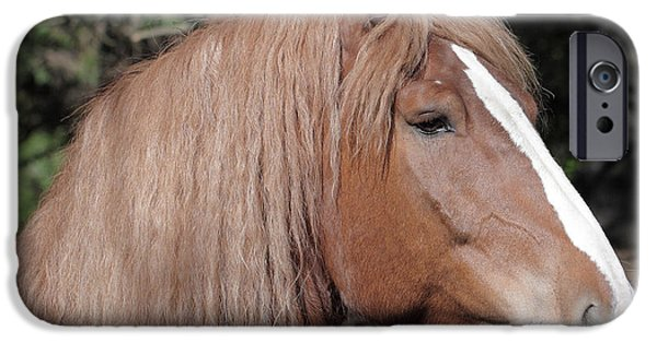 The Horse iPhone Cases - My best profile iPhone Case by Luc Bovet