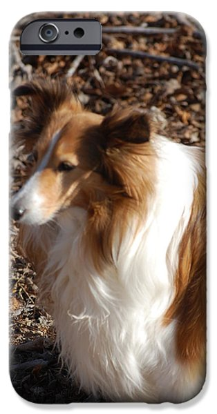 Dogs Digital iPhone Cases - My new best friend iPhone Case by David Lane