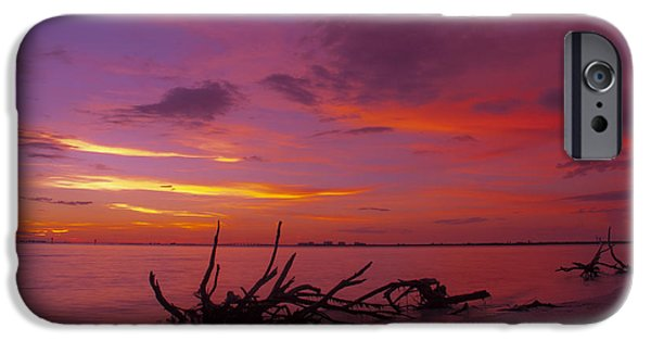 Root iPhone Cases - Mysterious Sunset iPhone Case by Melanie Viola