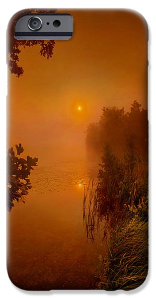 Fog Mist iPhone Cases - Mystic Morn iPhone Case by Phil Koch