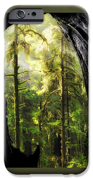Mist iPhone Cases - Mystical Forest Opening iPhone Case by Leland D Howard