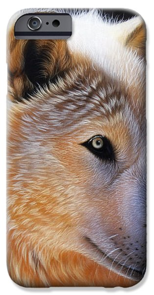 Nala iPhone Case by Sandi Baker