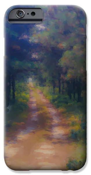 Mcentee Paintings iPhone Cases - Nantucket Paths #1 iPhone Case by Bill McEntee