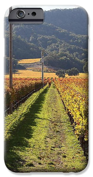 Napa Valley Vineyard . 7D9020 iPhone Case by Wingsdomain Art and Photography