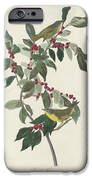 Nashville Tennessee iPhone Cases - Nashville Warbler iPhone Case by John James Audubon