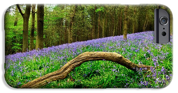 Spring Scenery iPhone Cases - Natural Arch and Bluebells iPhone Case by John Edwards