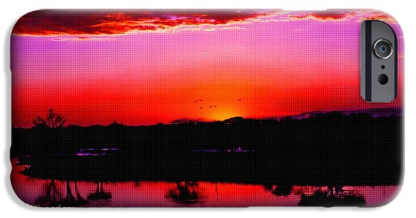 Digital Art Pastels iPhone Cases - Nature as Artist Catus 1 no.1 H a iPhone Case by Gert J Rheeders