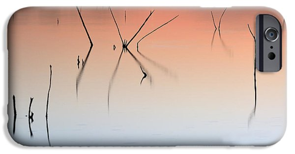 Colorful Abstract iPhone Cases - Nature Graphics II iPhone Case by Guido Montanes Castillo