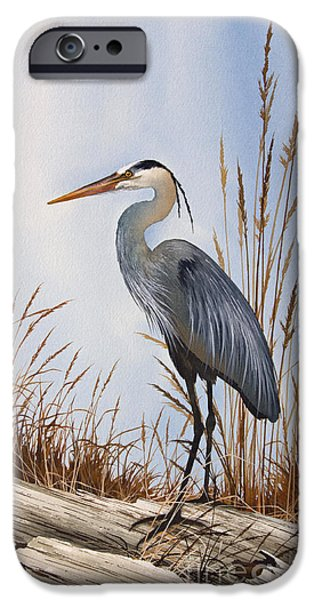 Heron Paintings iPhone Cases - Natures Gentle Beauty iPhone Case by James Williamson