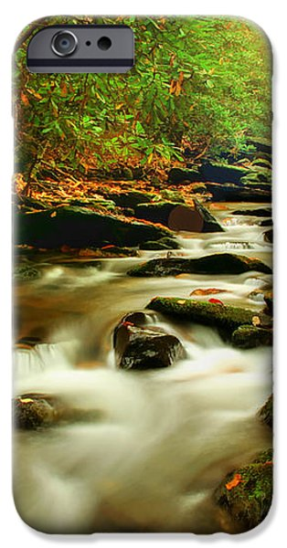 Natures Journey iPhone Case by Darren Fisher