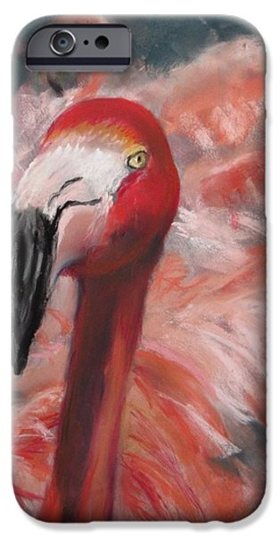 Jack Skinner iPhone Cases - Natures Lawn Ornament iPhone Case by Jack Skinner