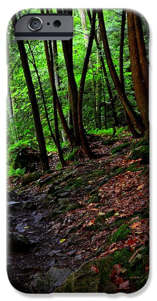 Pathway iPhone Cases - Natures Path iPhone Case by Lisa Wooten
