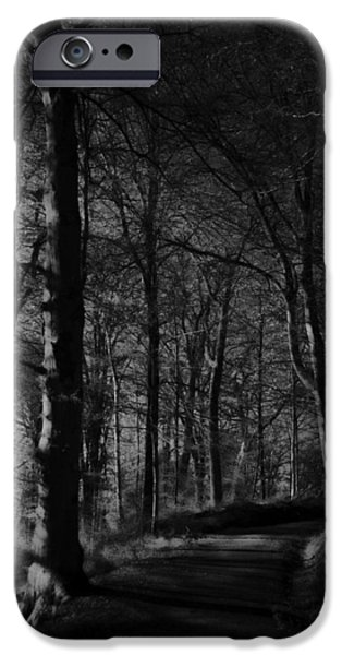 Destiny iPhone Cases - Natures Path iPhone Case by Miguel Winterpacht