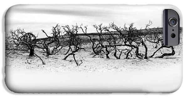 Buy iPhone Cases - Natures Remnants iPhone Case by Az Jackson