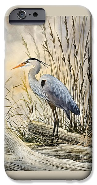Heron Paintings iPhone Cases - Natures Wonder iPhone Case by James Williamson