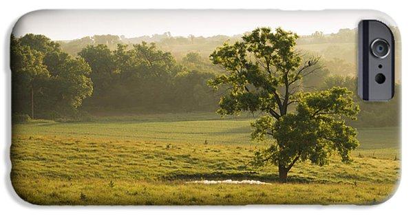 Nebraska iPhone Cases - Nebraska Serengeti #8805 iPhone Case by Jeffrey Henry