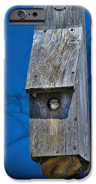 Over Hang iPhone Cases - Nest Box In The Spring iPhone Case by Henry Kowalski
