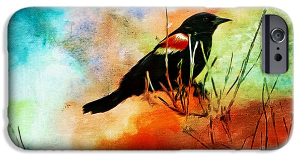 Birds iPhone Cases - Never Look Back iPhone Case by Tina  LeCour