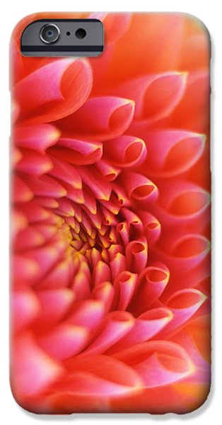 New Beginnings iPhone Case by Kathy Yates